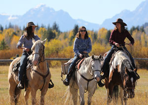 Horseback Riding - Yellowstone
