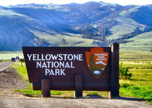 Yellowstone Tours - Jackson Hole