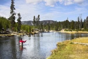 fly-fishing-yellowstone-jackson-hole
